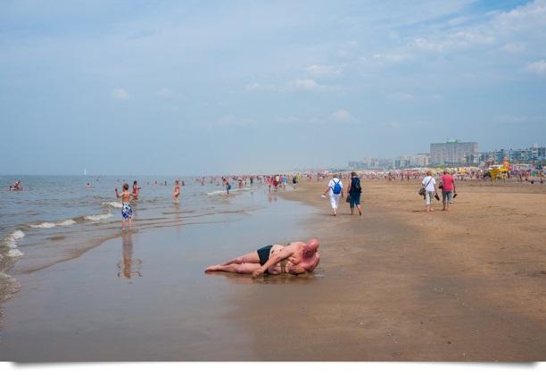Ballena en la Playa