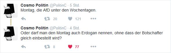 AfD-Erdogan-Tag