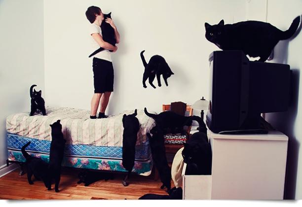 Freitags: Katzeneintopf